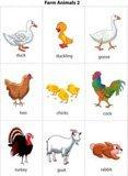 Картинки животных на английском языке