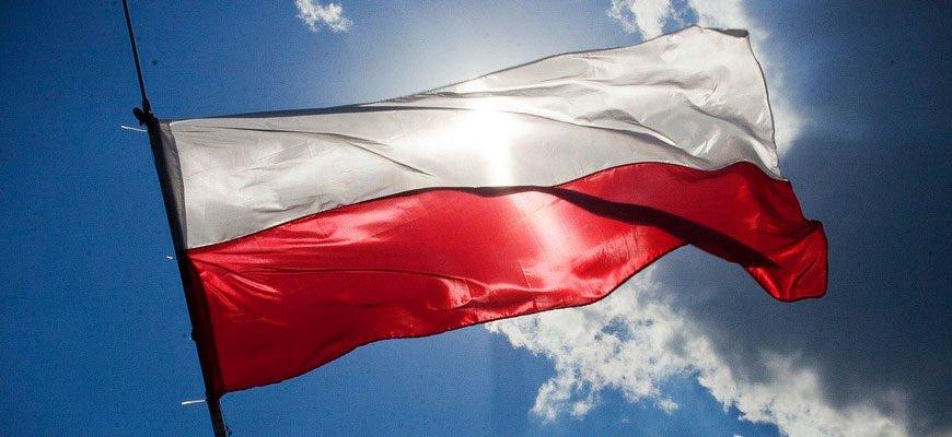 С чего начать изучение польского языка?