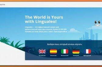 Обзор курсов Lingualeo